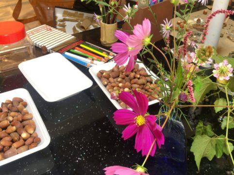 秋桜とどんぐり